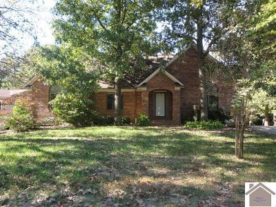 Graves County Single Family Home For Sale: 237 Golf Cart Dr