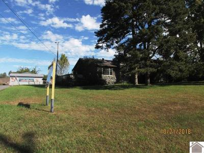 McCracken County Single Family Home For Sale: 429 Bleich Rd