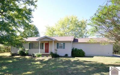 Benton Single Family Home For Sale: 395 Peggy Ann Springs Road