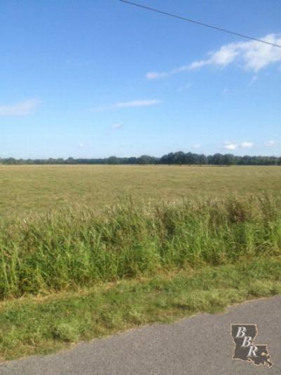 Terrebonne Parish, Lafourche Parish Residential Lots & Land For Sale: 543 E 40th Street