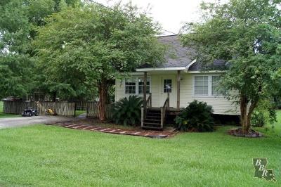 Cut Off Single Family Home For Sale: 208 E East 48th Street