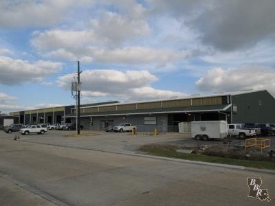 Terrebonne Parish, Lafourche Parish Commercial For Sale: 230 Development Street