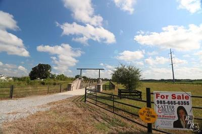 Terrebonne Parish, Lafourche Parish Residential Lots & Land For Sale: 298 Ranchland Trace