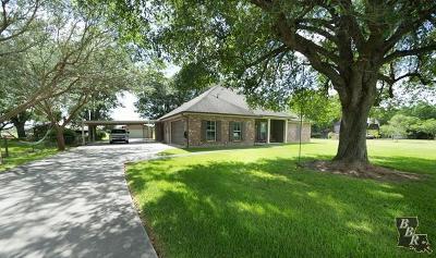 Terrebonne Parish, Lafourche Parish Single Family Home For Sale: 127 Horseshoe Road