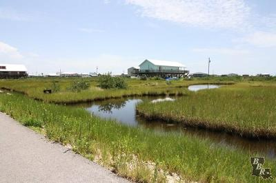 Grand Isle LA Residential Lots & Land Sold: $3,000