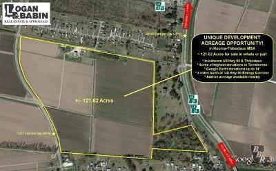 Terrebonne Parish, Lafourche Parish Residential Lots & Land For Sale: 450 Main Project Road
