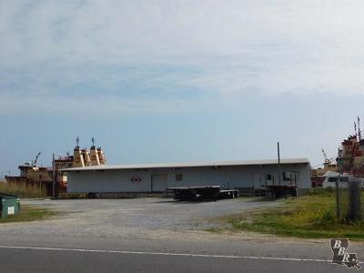 Terrebonne Parish, Lafourche Parish Commercial For Sale: 20927 Highway 1