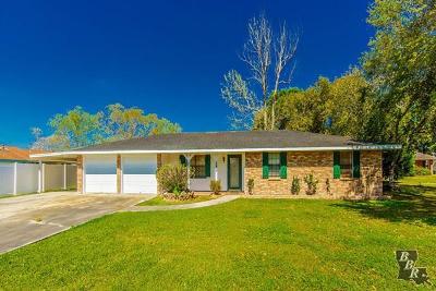 Cut Off Single Family Home For Sale: 153 E East 29th Street
