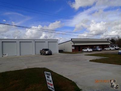 Terrebonne Parish, Lafourche Parish Commercial For Sale: 200 Highway 3161