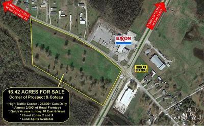 Terrebonne Parish, Lafourche Parish Residential Lots & Land For Sale: 1281 Coteau Road