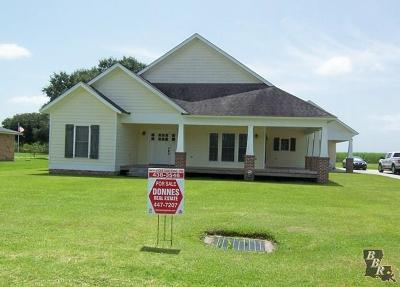 Thibodaux Single Family Home For Sale: 221 Emerald Park Drive