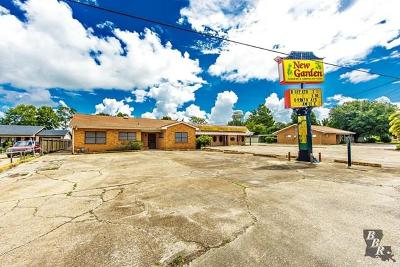 Terrebonne Parish, Lafourche Parish Commercial For Sale: 1400 St Mary
