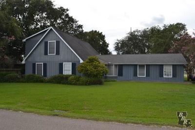 Cut Off Single Family Home For Sale: 398 E 88th Street