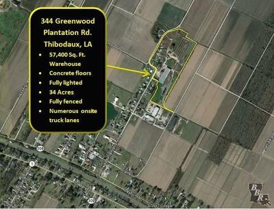 Terrebonne Parish, Lafourche Parish Commercial For Sale: 344 Greenwood Plantation Road