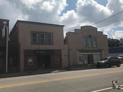 Terrebonne Parish, Lafourche Parish Commercial For Sale: 609&613 Barrow Street