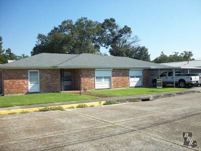 Houma Single Family Home For Sale: 801 Point Street