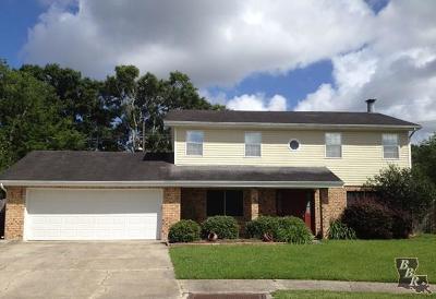 Houma Single Family Home For Sale: 924 Eagle Drive