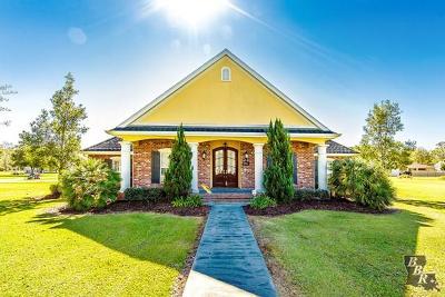 Gray Single Family Home For Sale: 326 Navarro Drive