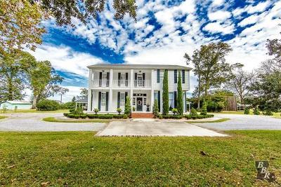 Terrebonne Parish, Lafourche Parish Single Family Home For Sale: 701 W Bayou Road