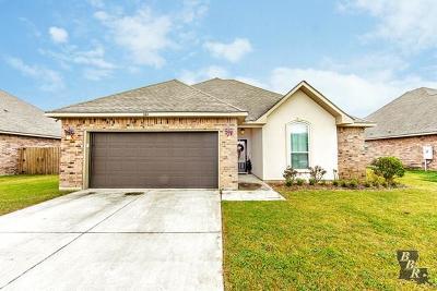 Thibodaux Single Family Home Back Up Offers: 264 Harvest Court