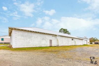 Terrebonne Parish, Lafourche Parish Commercial Lease For Lease: 202 Talbot Avenue