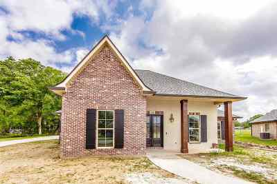 Houma Single Family Home For Sale: 159 Del Rio Drive