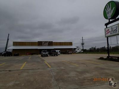 Terrebonne Parish, Lafourche Parish Commercial For Sale: 16230 Highway 3235 West