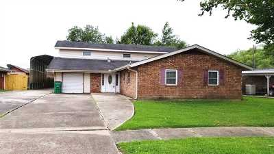 Single Family Home For Sale: 3008 Diane Drive