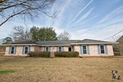Thibodaux Single Family Home For Sale: 412 Supercharge Drive