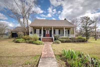 Thibodaux Single Family Home For Sale: 183 Appletree Drive