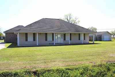 Raceland Single Family Home For Sale: 121 Plaisance Drive