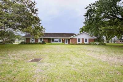 Thibodaux Single Family Home For Sale: 401 Supercharge Drive