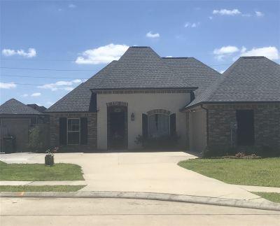 Houma Single Family Home For Sale: 156 Del Rio Drive
