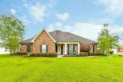 Thibodaux Single Family Home For Sale: 120 Cascade Drive
