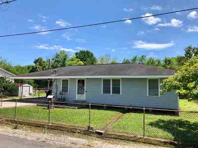 Cut Off Single Family Home For Sale: 133 West 131st Street