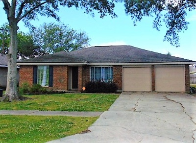 Single Family Home For Sale: 3215 Vine Drive