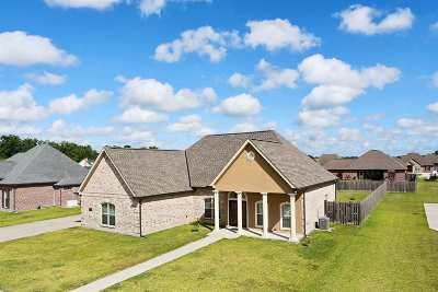 Gray Single Family Home For Sale: 184 Aubrey Joseph Drive