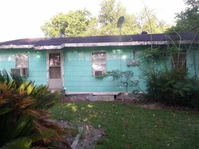 Napoleonville Single Family Home For Sale: 4037 Highway 308