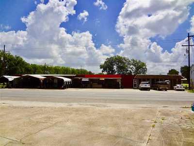 Terrebonne Parish, Lafourche Parish Commercial For Sale: 299 West Main Street