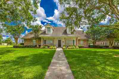 Houma Single Family Home For Sale: 147 Regal Row