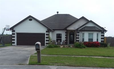 Houma Single Family Home For Sale: 255 Lake Penchant Court