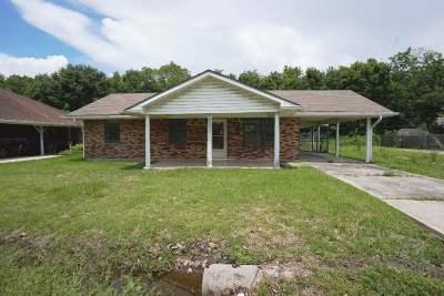 Gray Single Family Home For Sale: 419 Linda Ann Avenue