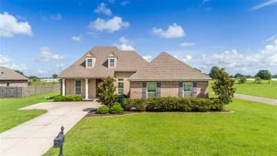 Terrebonne Parish, Lafourche Parish Single Family Home For Sale: 302 Crossing North Street