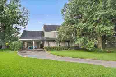 Thibodaux Single Family Home For Sale: 313 Pamela Place