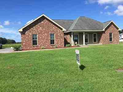 Thibodaux Single Family Home For Sale: 522 Victoria Court
