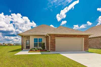 Thibodaux Single Family Home For Sale: 363 Pond Drive