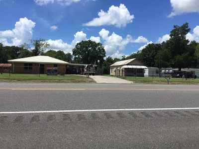 Napoleonville Single Family Home For Sale: 3425 Highway 1