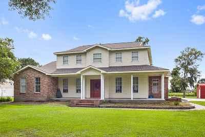 Thibodaux Single Family Home For Sale: 185 Chisholm Trail