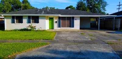 Houma Single Family Home For Sale: 602 Douglas Drive
