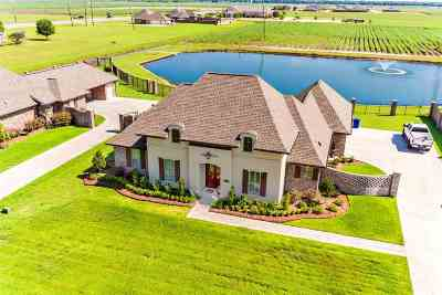 Thibodaux Single Family Home For Sale: 109 St Delphine Drive